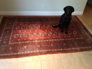 Maggie Rug